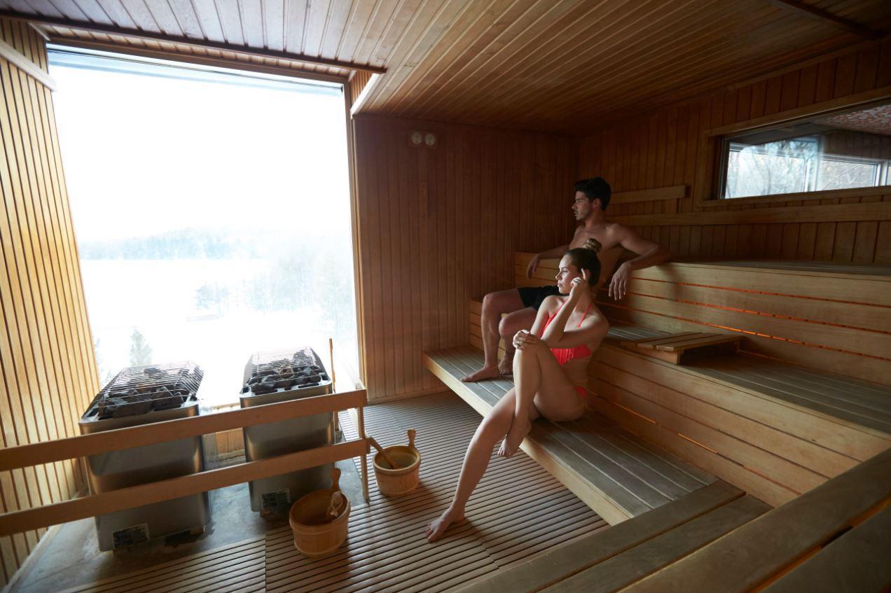 Sauna Vue Paronamique
